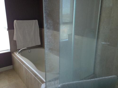 shower-3-before